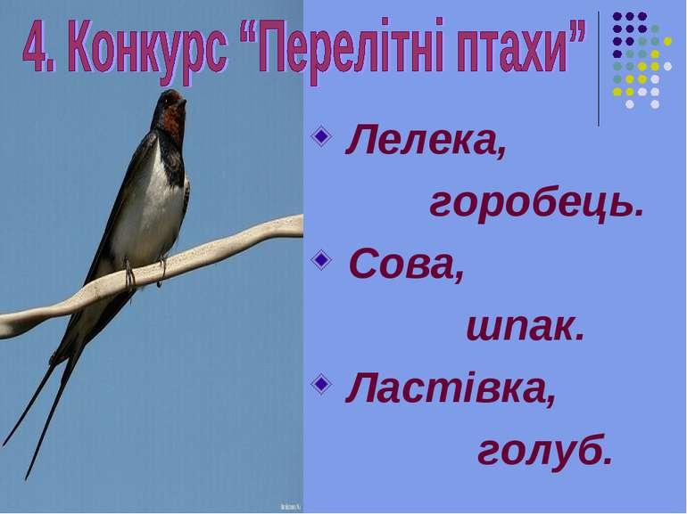 Лелека, горобець. Сова, шпак. Ластівка, голуб.