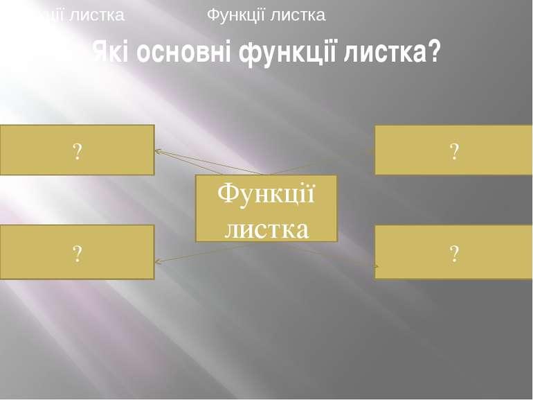 Які основні функції листка? ? ? Функції листка ? ? Функції листка Функції листка