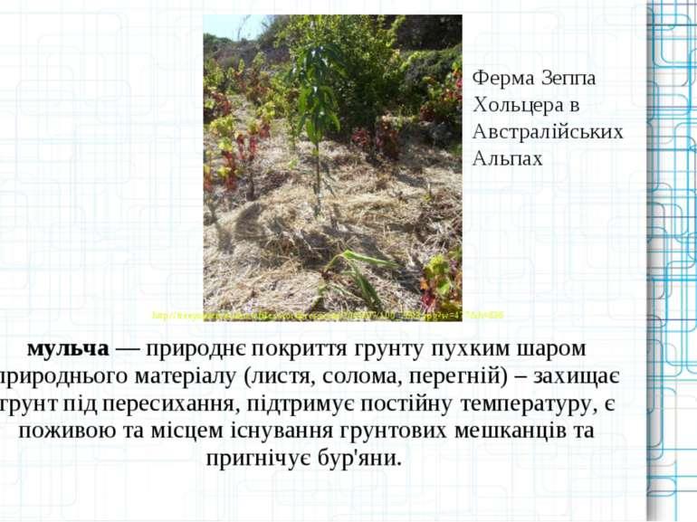 мульча ― природнє покриття грунту пухким шаром природнього матеріалу (листя, ...