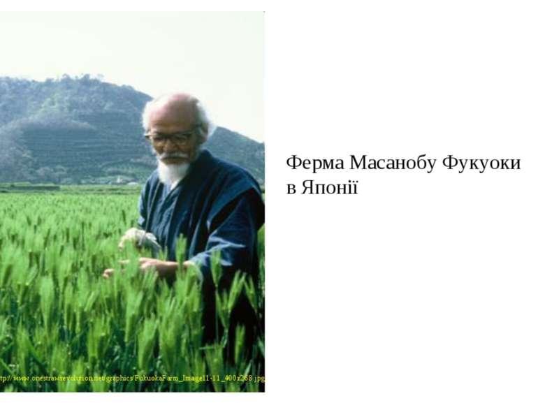 Ферма Масанобу Фукуоки в Японії http://www.onestrawrevolution.net/graphics/Fu...