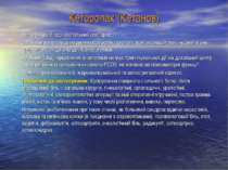 Кеторолак (Кетанов) Нестероїдний протизапальний препарат; За анальгезуючою ді...