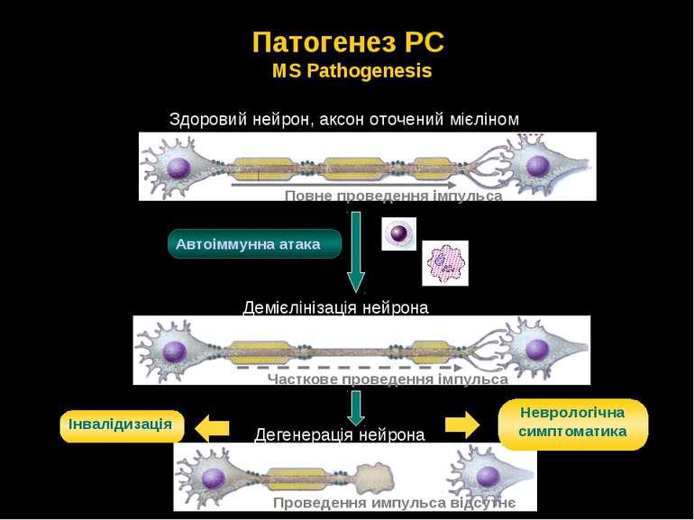 Патогенез РС MS Pathogenesis