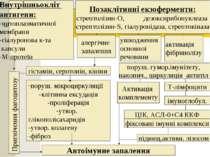 Внутрішньокліт антигени: -цитоплазматичної мембрани -гіалуронова к-та капсули...