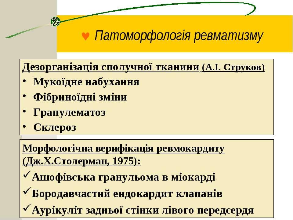 © Патоморфологія ревматизму Дезорганізація сполучної тканини (А.І. Струков) М...