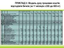 ПРИКЛАД 2: Модель руху грошових коштів: відгодівля бичків (за 11 місяців з 20...