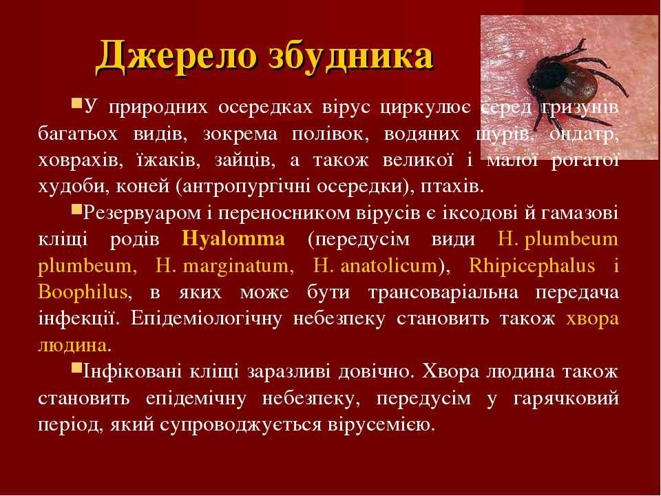 Джерело збудника У природних осередках вірус циркулює серед гризунів багатьох...