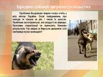 Бродячі собаки-загроза суспільству Проблема бездомних тварин гостро стоїть у ...