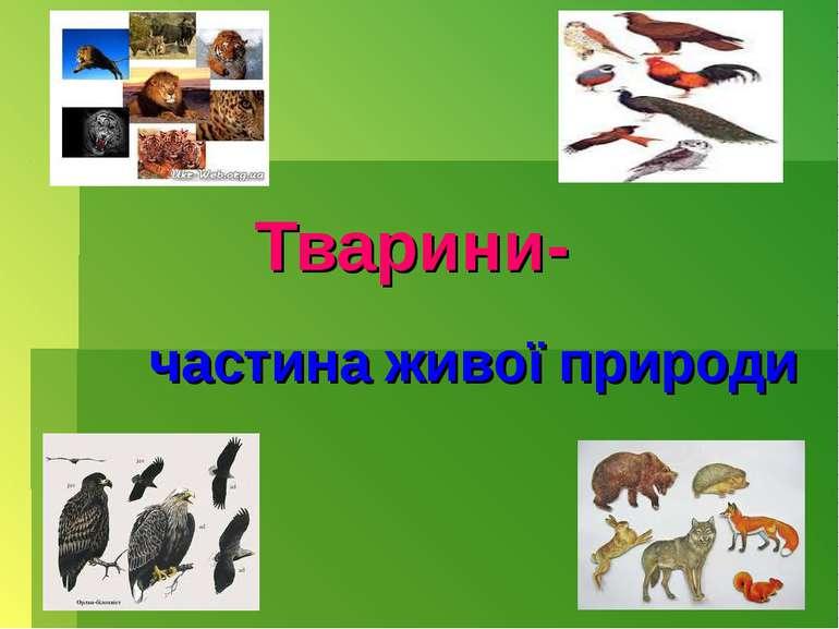 Тварини- частина живої природи