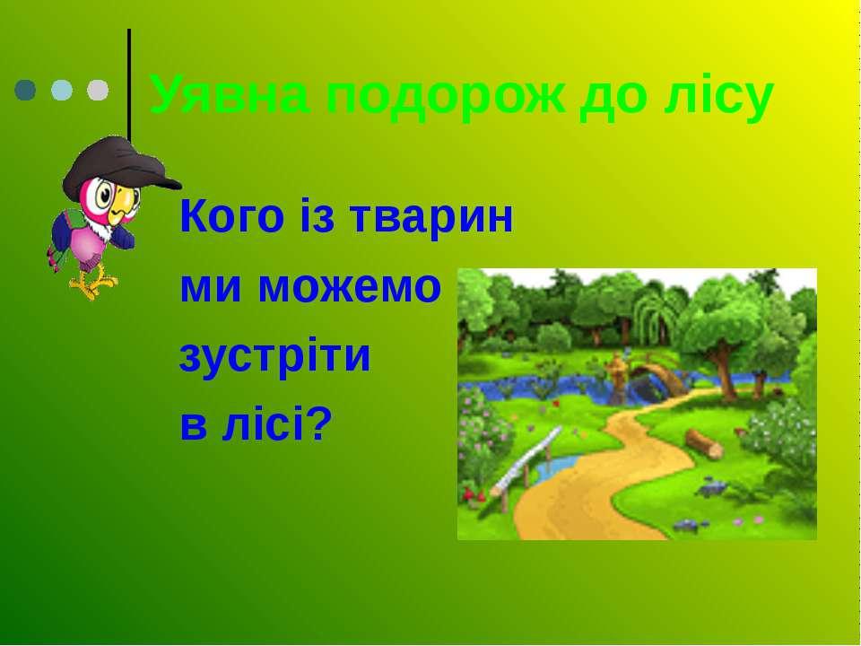 Уявна подорож до лісу Кого із тварин ми можемо зустріти в лісі?