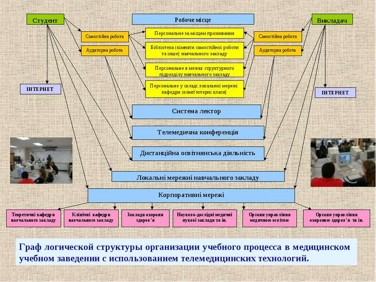 Граф логической структуры организации учебного процесса в медицинском учебном...