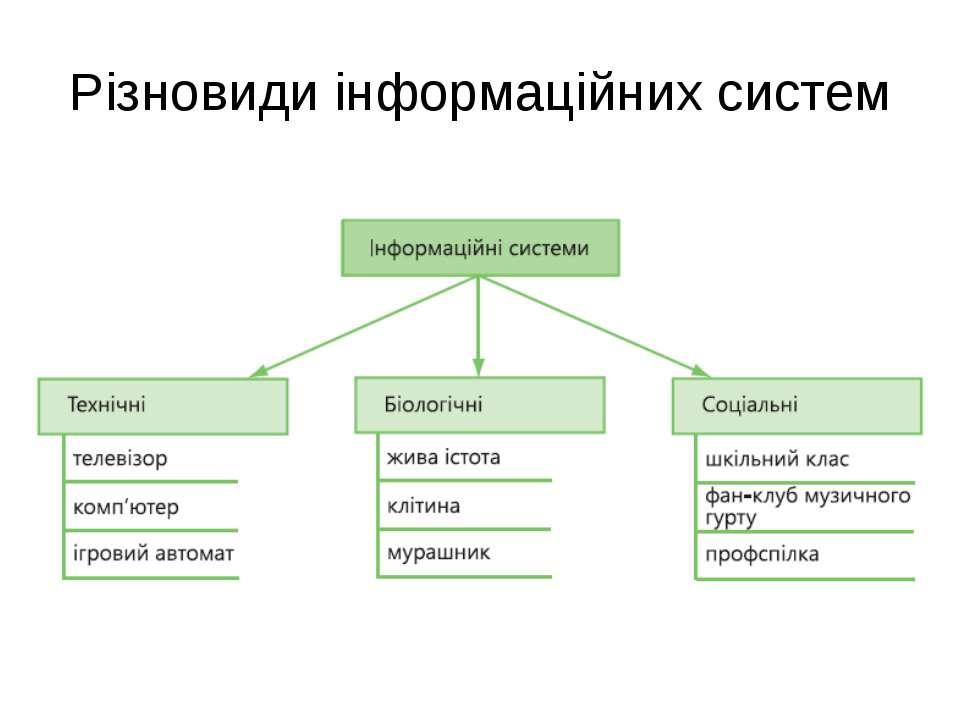 Різновиди інформаційних систем
