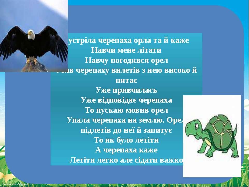 Зустріла черепаха орла та й каже Навчи мене літати Навчу погодився орел Узяв ...