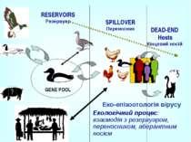 RESERVOIRS Резервуар Еко-епізоотологія вірусу Екологічний процес: взаємодія з...