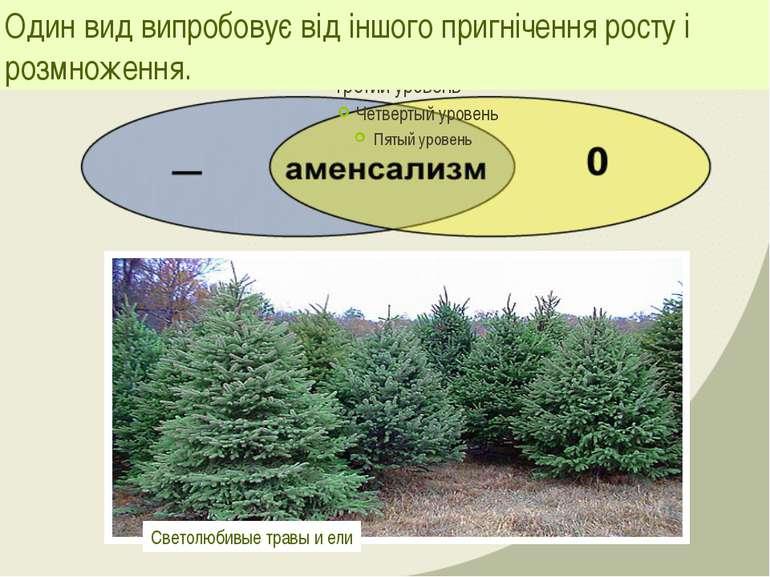 Один вид випробовує від іншого пригнічення росту і розмноження. Светолюбивые ...