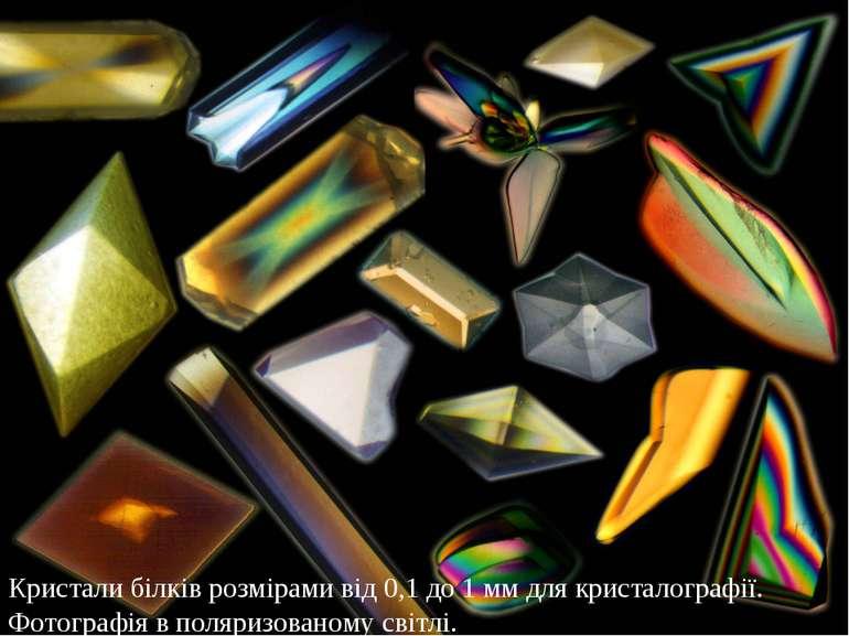 Кристали білків розмірами від 0,1 до 1 мм для кристалографії. Фотографія в по...