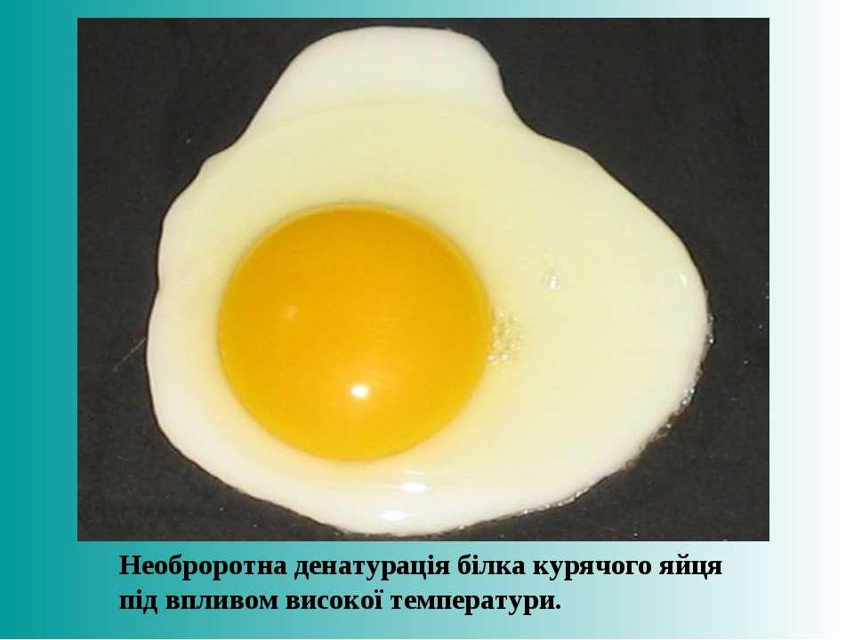 Необроротна денатурація білка курячого яйця під впливом високої температури.