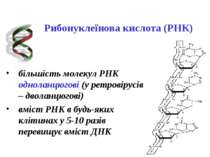 Рибонуклеїнова кислота (РНК) більшість молекул РНК одноланцюгові (у ретровіру...
