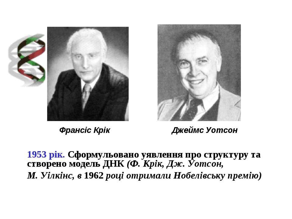 Джеймс Уотсон Франсіс Крік 1953 рік. Сформульовано уявлення про структуру та ...