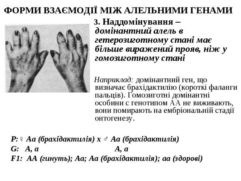 ФОРМИ ВЗАЄМОДІЇ МІЖ АЛЕЛЬНИМИ ГЕНАМИ 3. Наддомінування – домінантний алель в ...