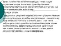 Вона є головною частиною екстрапірамідної систем і вищим регулюючим центром в...