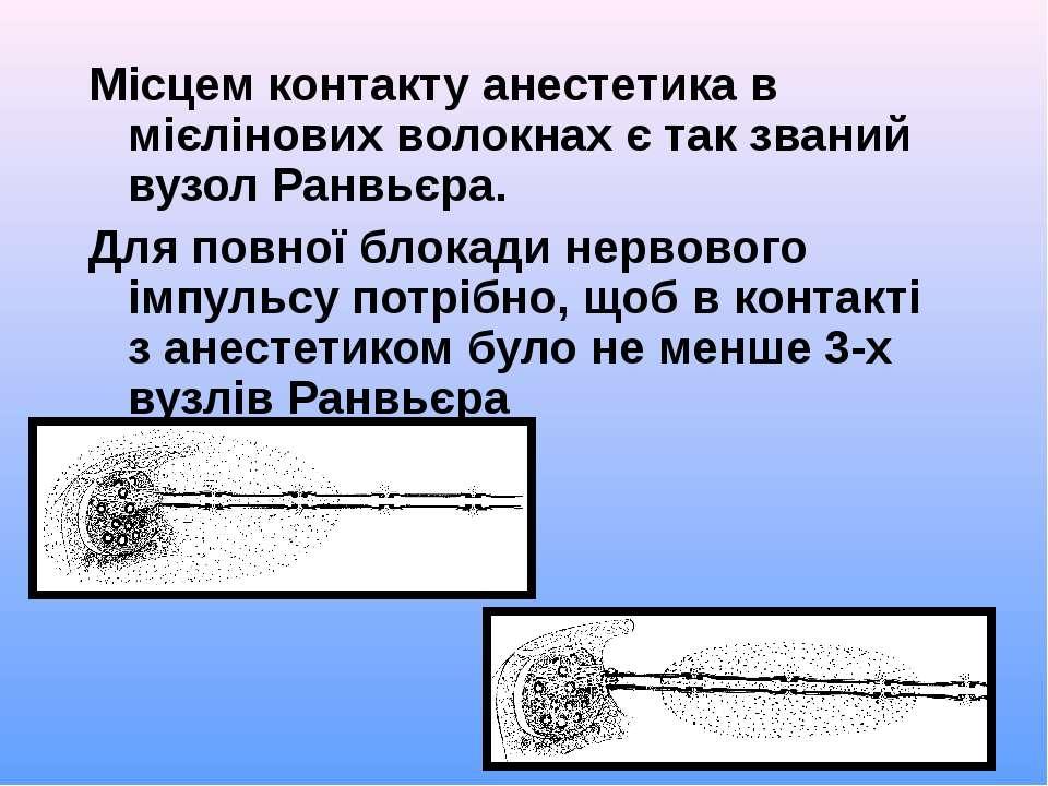 Місцем контакту анестетика в мієлінових волокнах є так званий вузол Ранвьєра....