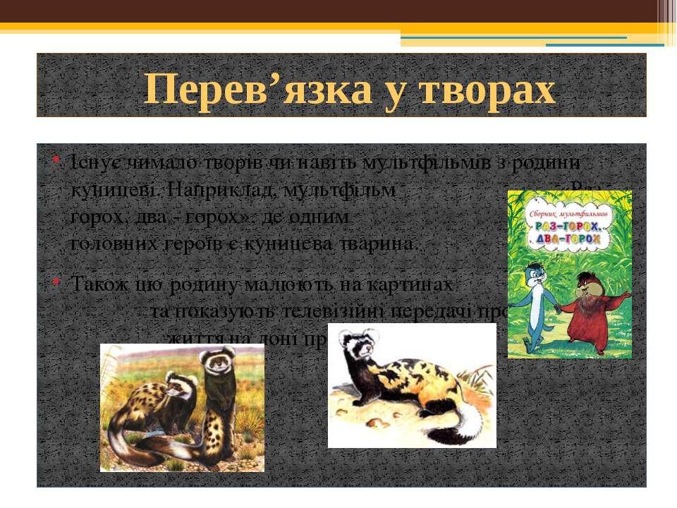 Існує чимало творів чи навіть мультфільмів з родини куницеві. Наприклад, муль...