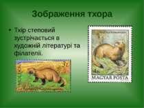 Зображення тхора Тхір степовий зустрічається в художній літературі та філателії.