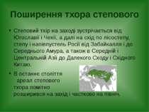 Поширення тхора степового Степовий тхір на заході зустрічається від Югославії...