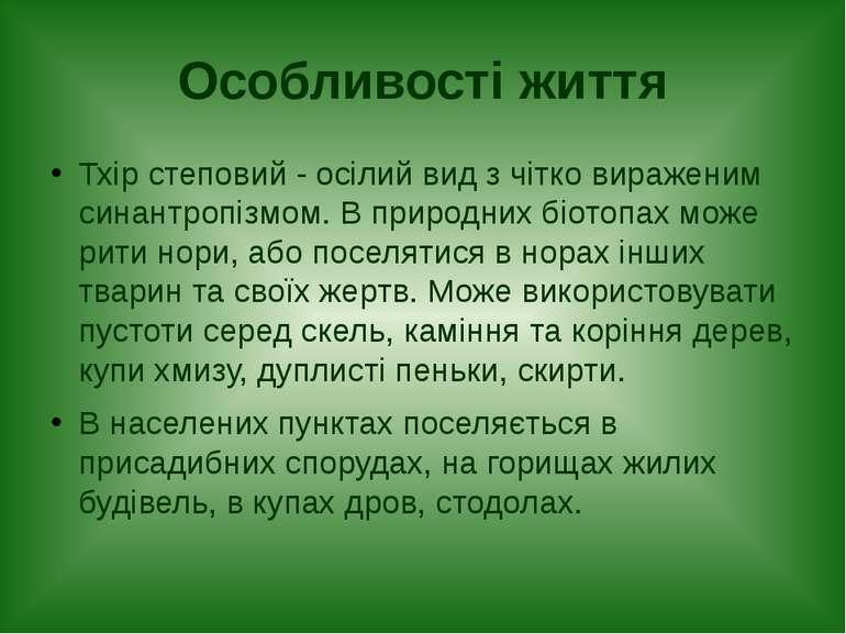 Особливості життя Тхір степовий - осілий вид з чітко вираженим синантропізмом...