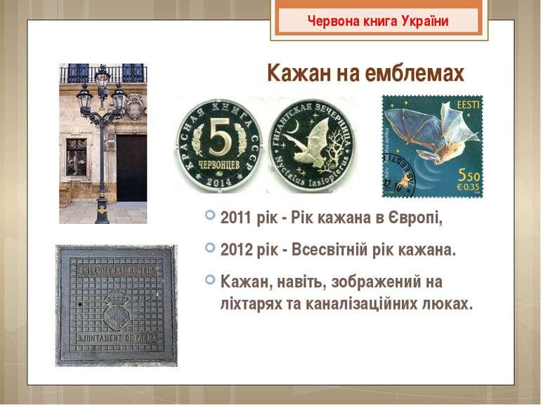 2011 рік - Рік кажана в Європі, 2012 рік - Всесвітній рік кажана. Кажан, наві...