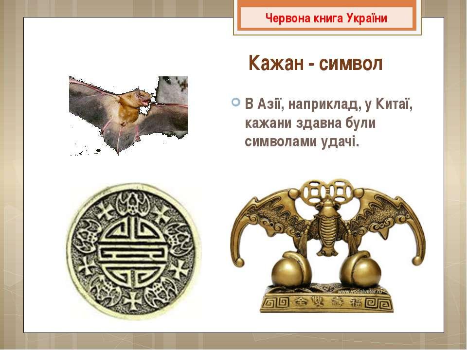 В Азії, наприклад, у Китаї, кажани здавна були символами удачі. Червона книга...
