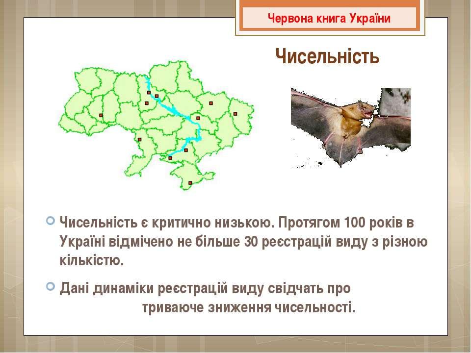 Чисельність Чисельність є критично низькою. Протягом 100 років в Україні відм...