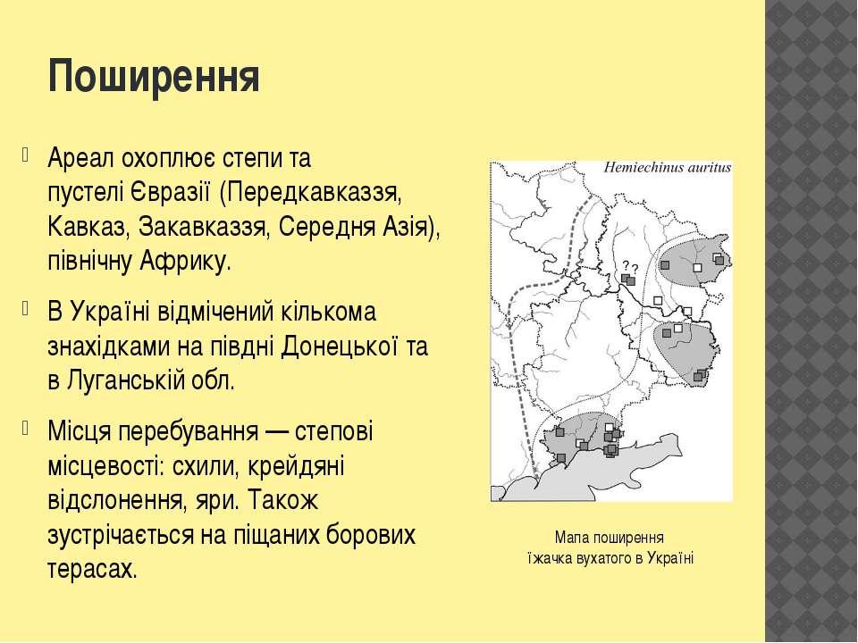 Поширення Ареалохоплює степи та пустеліЄвразії (Передкавказзя, Кавказ, Зака...