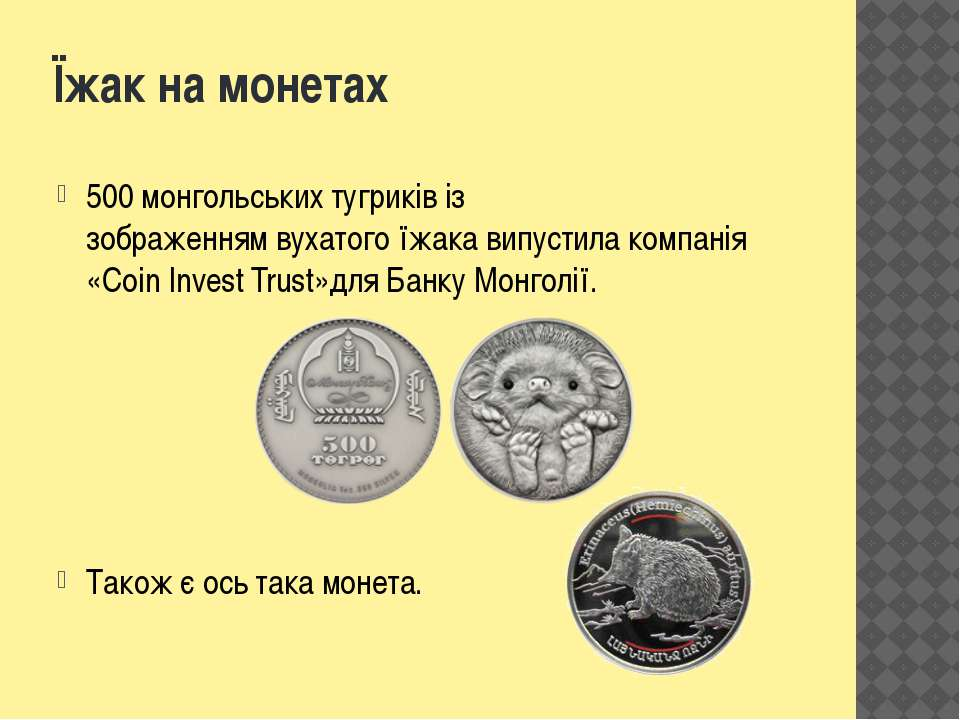 Їжак на монетах 500монгольськихтугриківіз зображеннямвухатогоїжака випус...