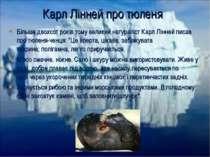 Більше двохсотроків тому великийнатураліст Карл Ліннейписав про тюленя-чен...