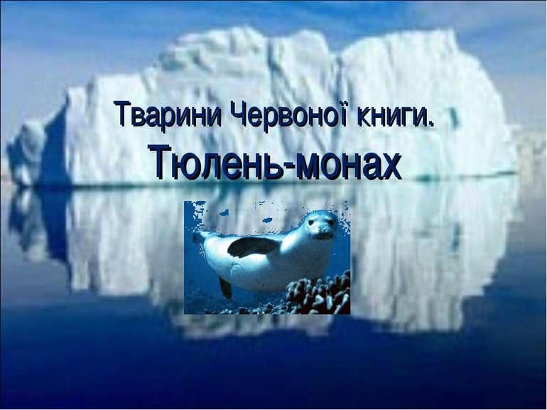 Тварини Червоної книги. Тюлень-монах