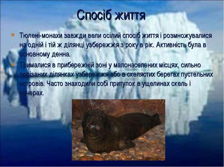 Тюлені-монахи завжди вели осілий спосіб життя і розмножувалися на одній і тій...
