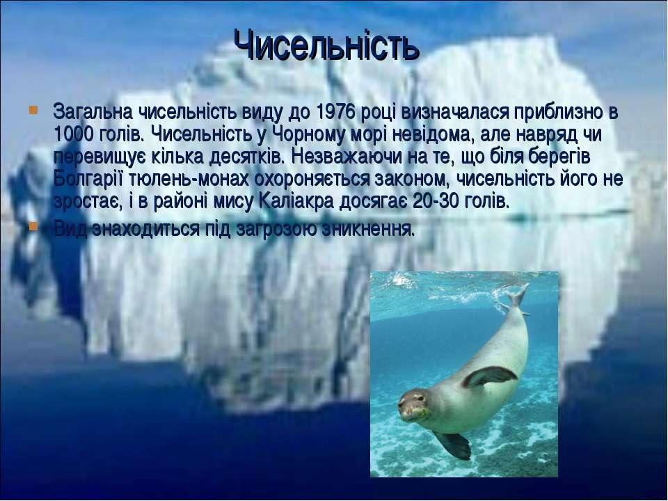Загальна чисельність виду до 1976 році визначалася приблизно в 1000 голів. Чи...