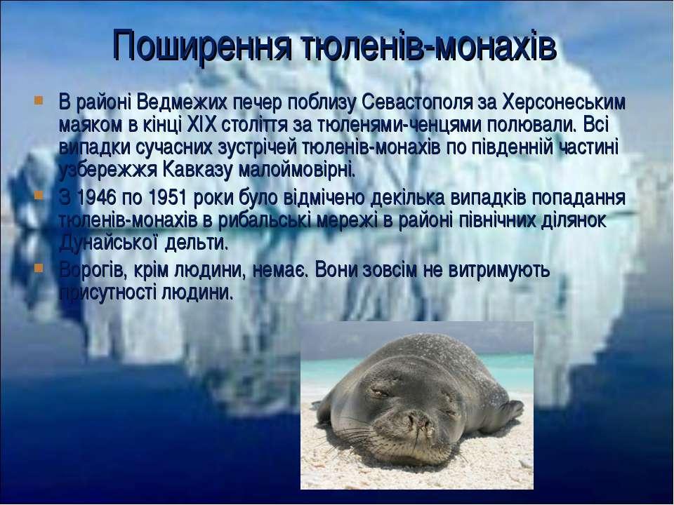 В районі Ведмежих печер поблизу Севастополя за Херсонеським маяком в кінці XI...