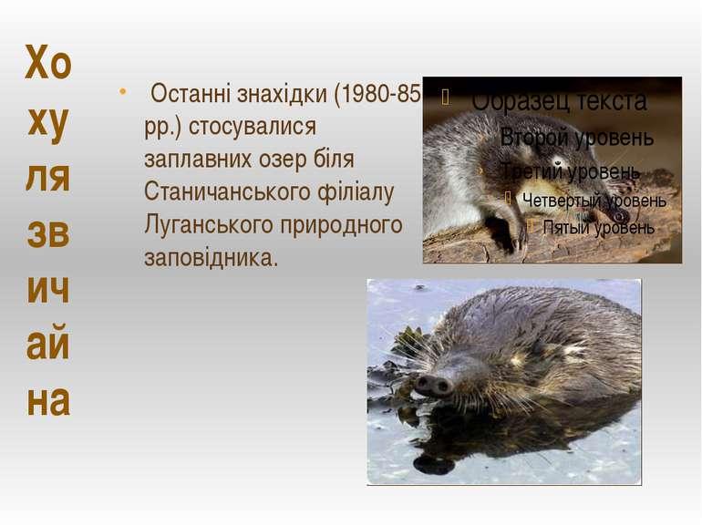 Останні знахідки (1980-85 рр.) стосувалися заплавних озер біля Станичанського...