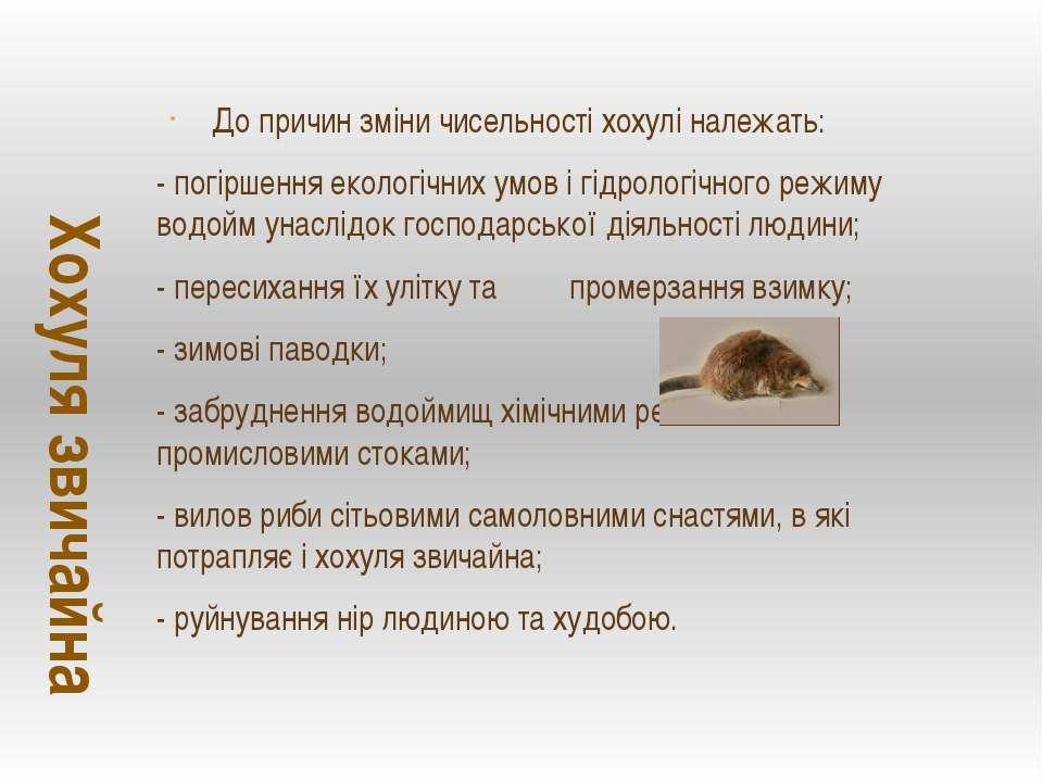 До причин зміни чисельності хохулі належать: - погіршення екологічних умов і ...
