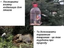 Поставити взимку годівницю для птахів Та допомагати пораненим тваринам - це т...