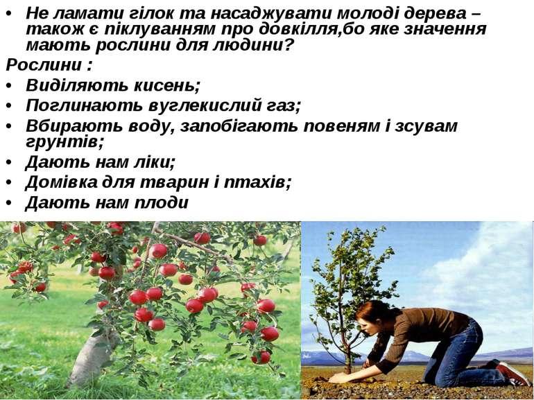 Не ламати гілок та насаджувати молоді дерева – також є піклуванням про довкіл...