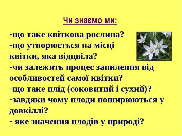 Чи знаємо ми: що таке квіткова рослина? що утворюється на місці квітки, яка в...