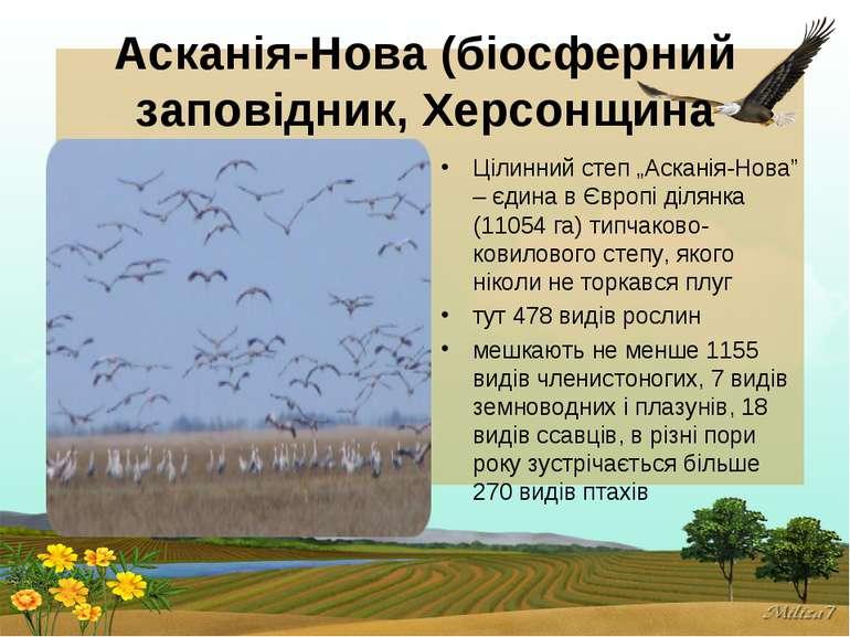 """Асканія-Нова (біосферний заповідник, Херсонщина Цілинний степ """"Асканія-Нова"""" ..."""
