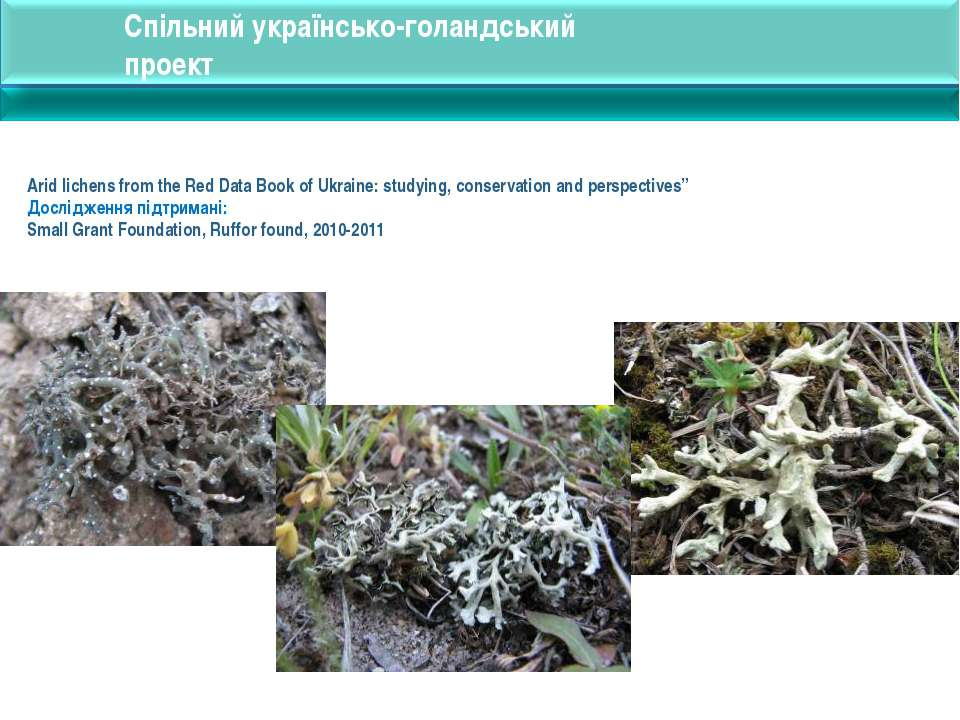 Arid lichens from the Red Data Book of Ukraine: studying, conservation and pe...