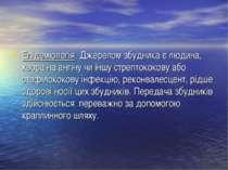 Епідеміологія. Джерелом збудника є людина, хвора на ангіну чи іншу стрептокок...
