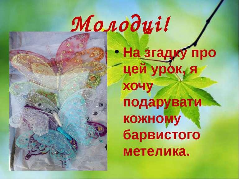 Молодці! На згадку про цей урок, я хочу подарувати кожному барвистого метелика.