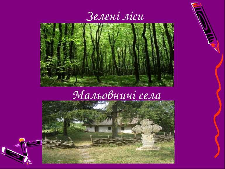 Зелені ліси Мальовничі села