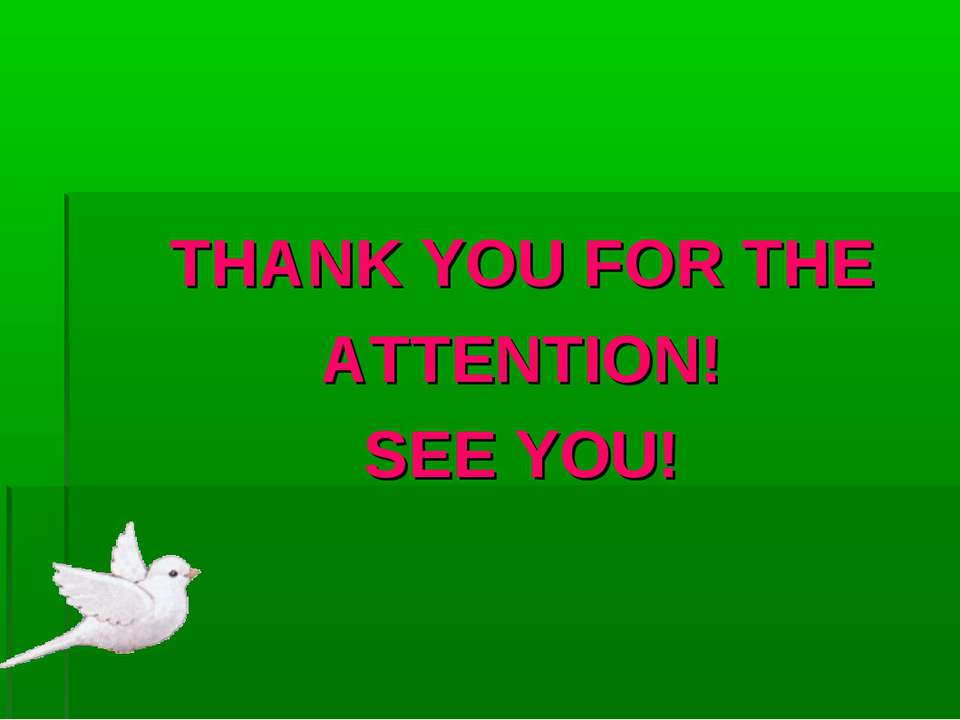 THANK YOU FOR THE ATTENTION! SEE YOU!